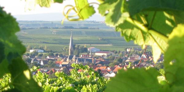 Immobilien in Rheinhessen