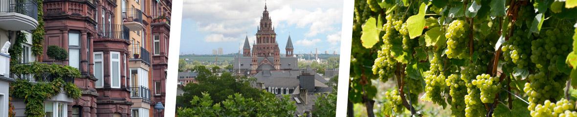 Juras Immobilien Mainz
